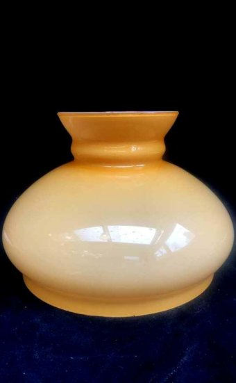 Tulipe ambrée pour lampes à pétrole ou électrique
